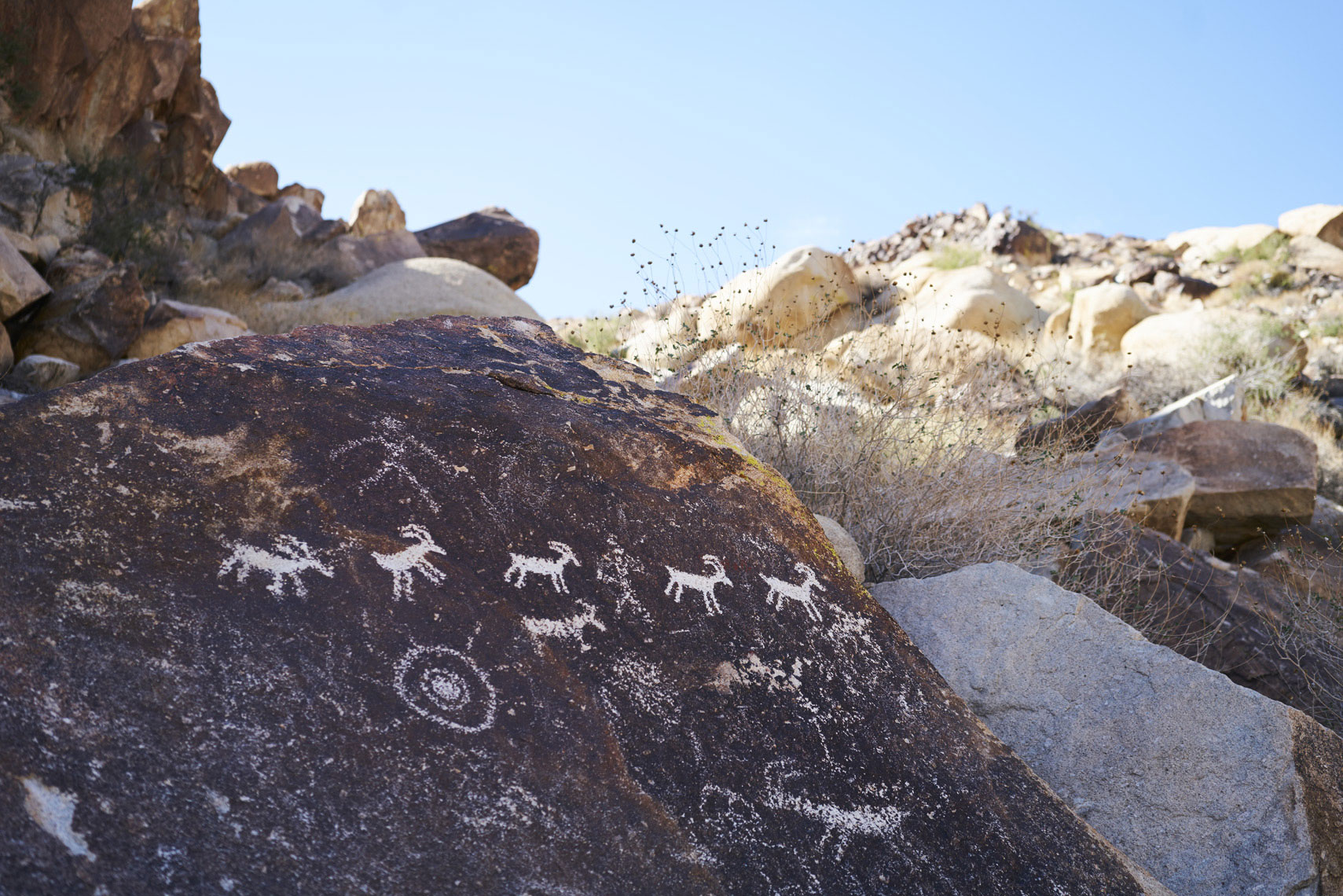 Petroglyphs dated from 1100AD to 1900AD on a rock off Christmas Tree Pass near Grapevine Canyon Laughlin, Nevada  Sean Dagen Photography
