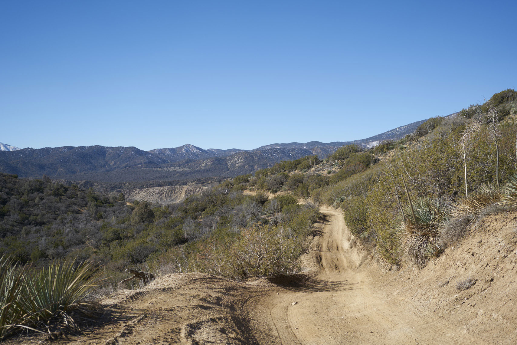 Trail at Hungry Valley SVRA Gorman California Sean Dagen Photography