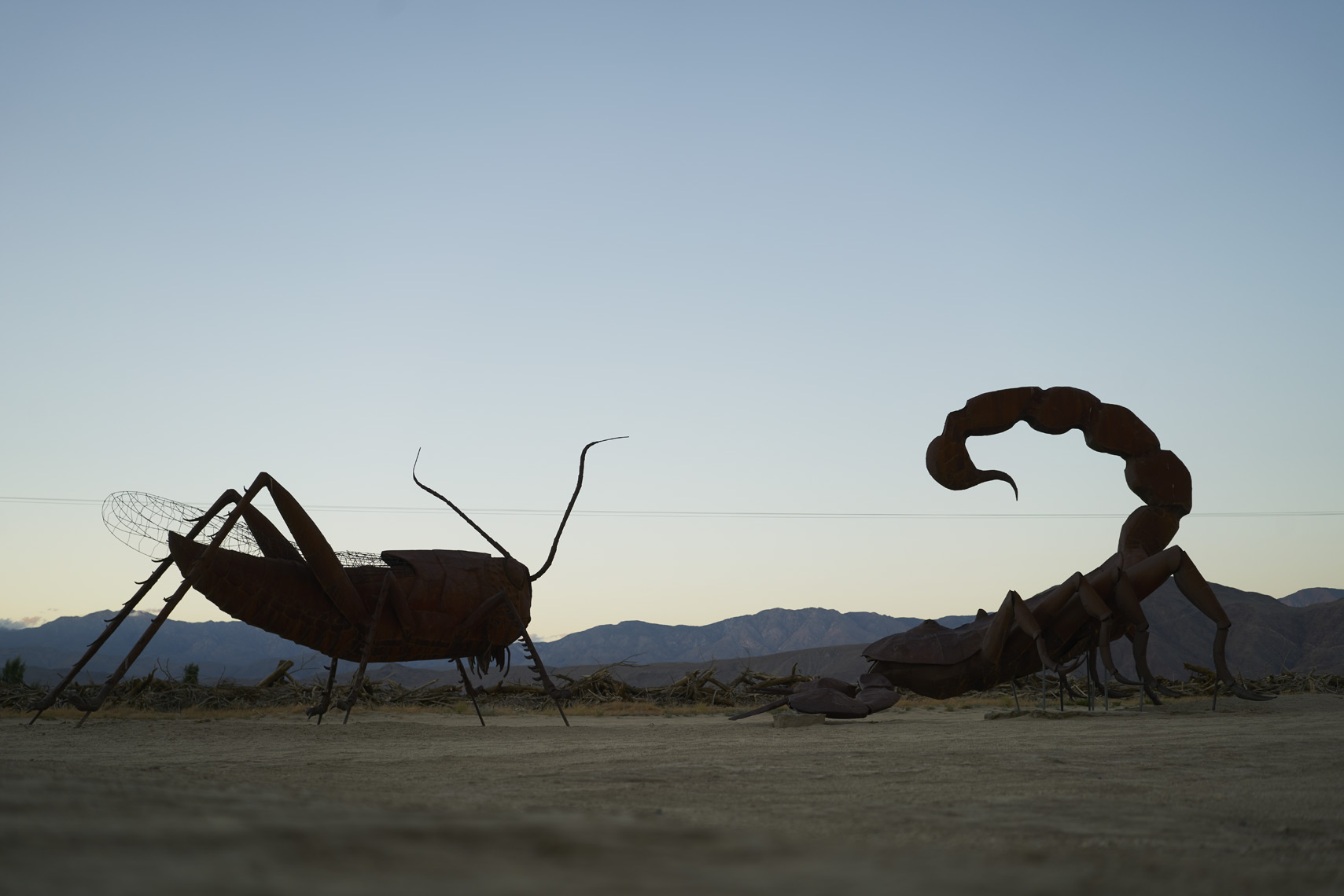 Sculptures in Galleta Meadows Borrego Springs California Sean Dagen Photography